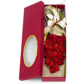 꽃상자 c13