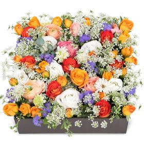 꽃상자 c506