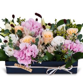 꽃상자 c712